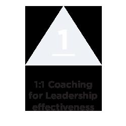 Powerful tools 1 - coaching icon